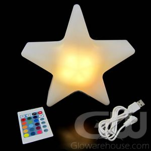 LED Star Centerpiece Lamp Light with Remote